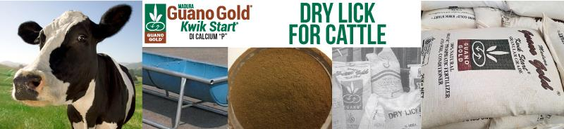 Guano Gold Kwik Start is DPI-approved for dry lick and stock feed use, in both its granular and powder form.