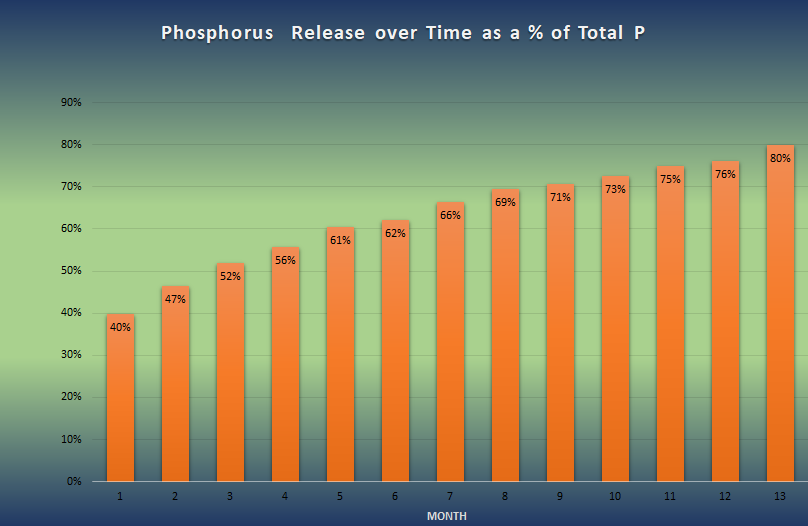 Phosphorus release over time for Guano Gold organic fertilizer, shown as a percentage of the total phosphorus.